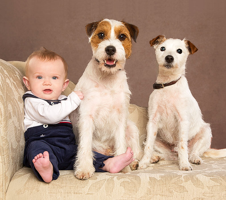 Dog portrit with a Baby National Portrait Awards