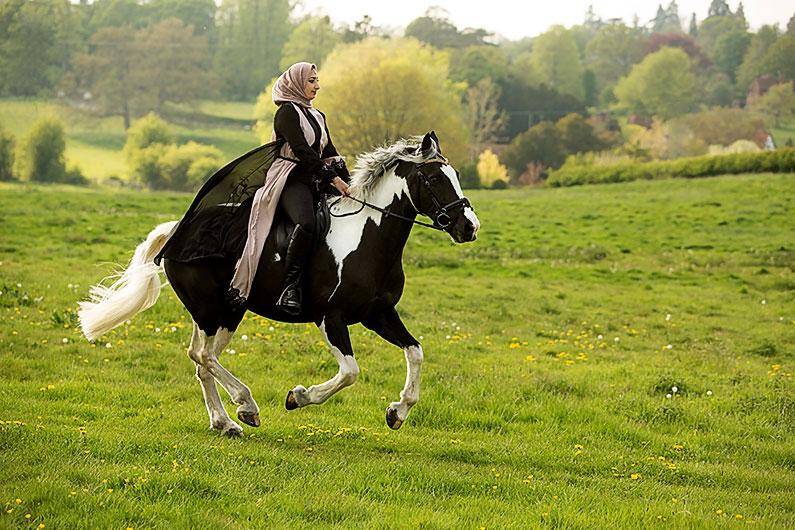 Horse Portraits Redpath Photos