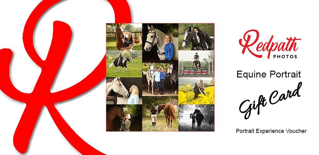Equine Portrait Gift Card Portrait Experince Portrait Voucher Redpath Photos