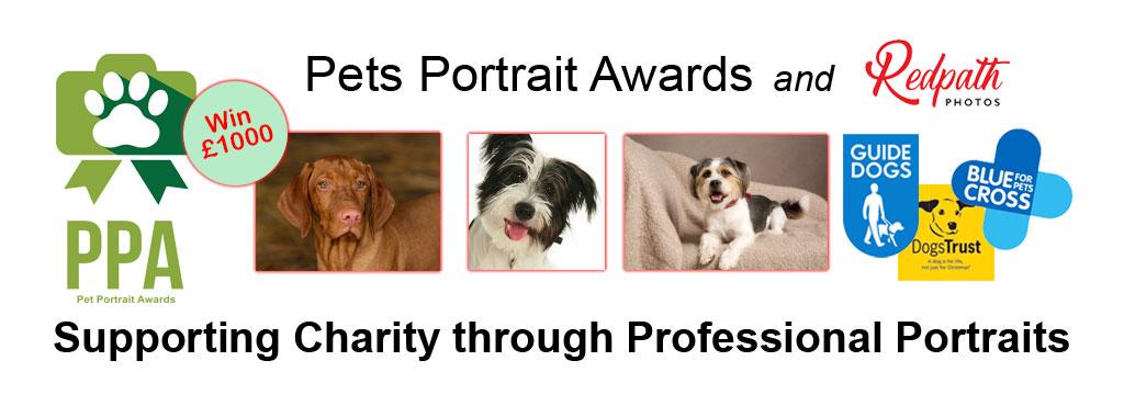 Pets Portrait Awards Redpath Photos