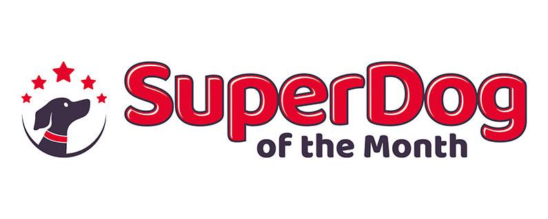 SuperDog of the Month Rickmansworth